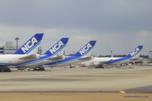 Row of NCA: Nippon Cargo Airlines jets
