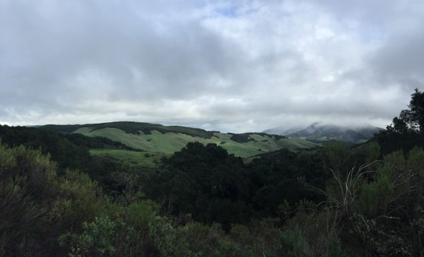Rolling hills of Santa Ynez